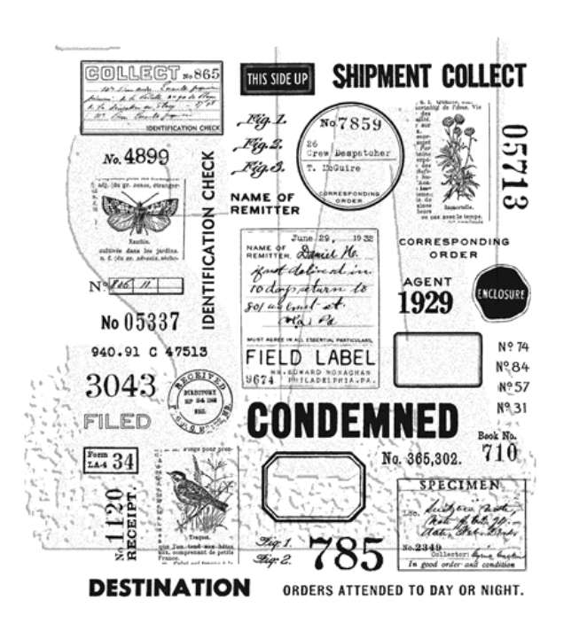 Tim Holtz/Stampers Anonymous, Field Notes CMS396